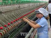Indian firm wants to supply garment-textile machines for Vietnam