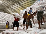 Philippines to import more rice from Vietnam