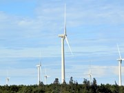 Expert: Law on renewable energy needed