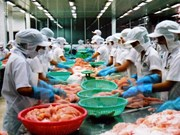 Vietnam to become global seafood processing centre