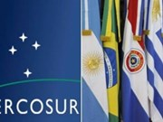 High potential seen in Vietnam-Mercosur partnership