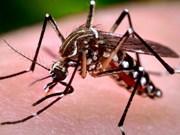 HCM City expands Zika virus monitoring network