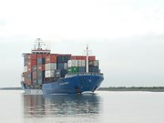Can Tho's port receives first large container ship