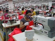 Vietnamese workers may have to work more years