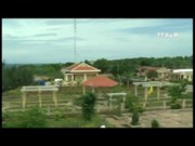 [Video] Con Co island tourism route to open