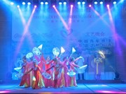 Vietnamese, Chinese youths work together in festival
