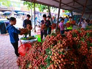 Agriculture sector aims to complete 1.2 percent growth target