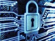 Workshop studies cyber security in Vietnam
