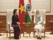 Vietnam, India agree to tighten parliamentary connections