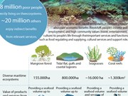 Vietnam rich in maritime ecosystems