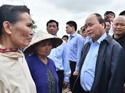 PM inspects flooding areas in Binh Dinh