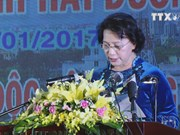 Hai Duong honoured with Independence Order for achievements