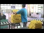 Binh Duong's export earnings reach 24.3 billion USD