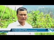 Model of safe vegetables to change remote commune