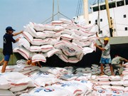 Vietnam's rice export down nearly 26%