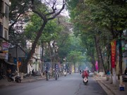 Hanoi's streets quiet on days before Lunar New Year