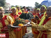 Traditional cake festival in Thanh Hoa