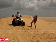White Sand Dunes in PhanThiet attract tourists