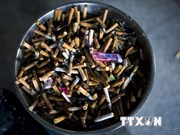 Tobacco kills 7 million people every year
