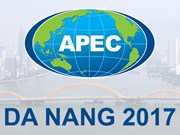 Volunteers sought for APEC 2017