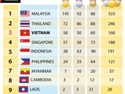 SEA Games 29: Final medal tally
