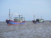 Fishermen cling to traditional fishing ground