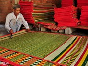 100-year-old sedge mat village on verge of extinction
