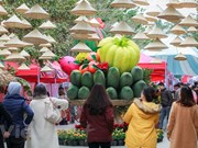Fair features traditional Lunar New Year (Tet) in Ecopark