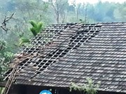 Hailstorms destroy hundreds of houses in Nghe An
