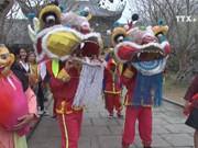 Traditional festivals mark outset of Lunar New Year