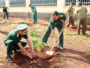 Activities held in response to World Environment Day