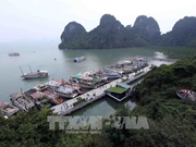 Programme promotes actions for green Ha Long
