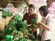 More trade activities needed to promote longan consumption