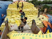 Vietnam imports over 2.4 million tonnes of fertiliser in six months