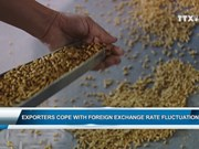 Exporters cope with foreign exchange rate fluctuation