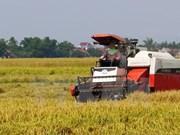 OECD hails Vietnam's impressive agricultural reform