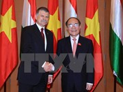 Vietnamese, Hungarian NA chairmen seek stronger ties