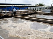 Automatic wastewater monitoring system inaugurated in HCM City