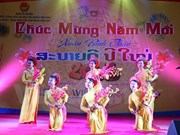 Tet celebrations in Eygpt, US, Laos, UAE