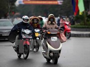 Severe cold snaps likely to hit northern Vietnam in Feb