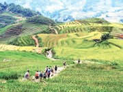 Lao Cai province braces for 'tourism year'