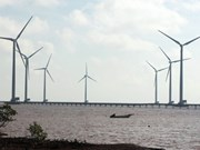 Vietnam needs clearer windpower laws: experts
