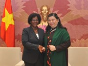 Vietnam, Mozambique forge legislative ties