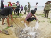 PM directs solutions in wake of mass fish deaths