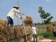 Korean NGO helps Cao Bang farmers improve income