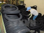 Vietnam attends tyre exposition in India