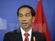 Indonesia keen to strengthen maritime policy