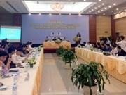 Vietnamese firms struggle for integration