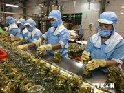 Vietnamese exporters still not take advantage of trade deals