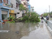 Storm Mirinae takes heavy toll on northern Vietnam
